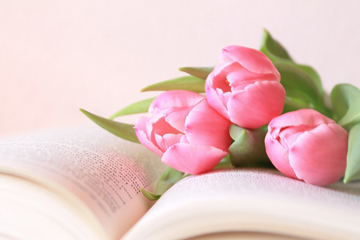 книги ,фото
