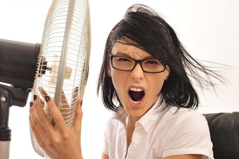 как спастись от жары, фото
